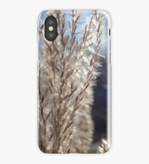 Plant in the sun iPhone Case/Skin