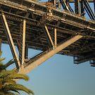 The Bridge & Opera House .. a different view by Michael Matthews