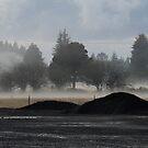 Dämmerung in den Gabeln, Washington State, USA von JCDesignsUK