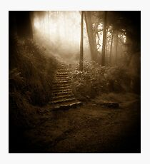 Mountain Steps (Holga) Photographic Print