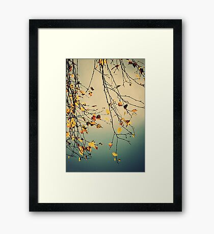 A Poem from Nature Framed Print