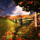 Autumn Awakening by Chantal PhotoPix