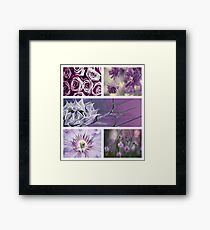 Collection ~ Purple Flowers Framed Print