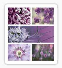 Collection ~ Purple Flowers Sticker