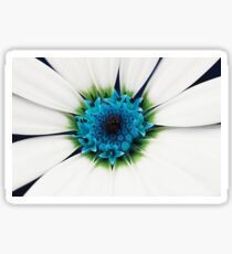 White petals Sticker