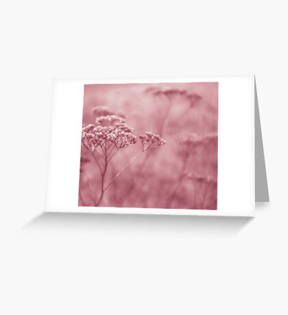 Nature in pink Greeting Card