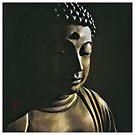 Buddha Glance  by 73553