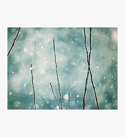 The sound of winter Photographic Print