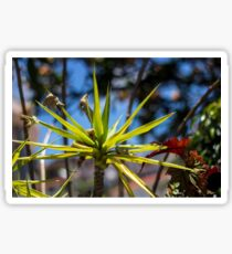 Spike Plant - Nature Photography  Sticker