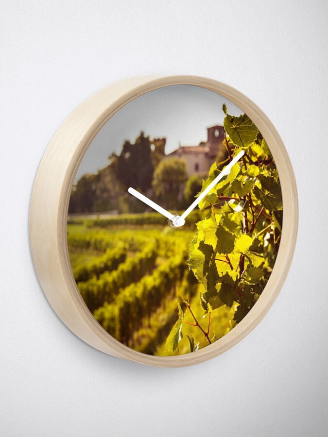 Alternate view of grapevine field in the italian countryside Clock