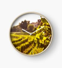 grapevine field in the italian countryside Clock