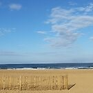 Beach Panorama by Richard Winskill