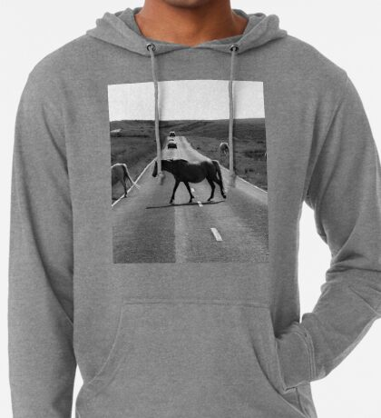 Horse crossing a road in Swansea`s Gower, protected area in Wales Lightweight Hoodie