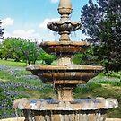 Fountain in the Garden by Heather Friedman