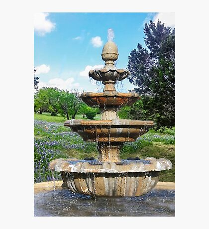 Fountain in the Garden Photographic Print
