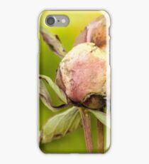 Summer Farewell iPhone Case/Skin