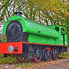 Old Colliery Steam Tender, Railway, Wales by Remo Kurka