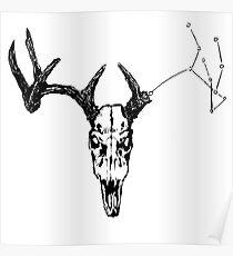 Deer skull constellation Poster