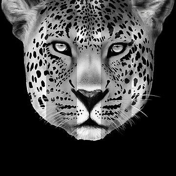 Leopard Pause by Miln3r