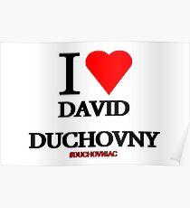 I Love David Duchovny Poster