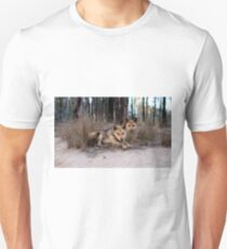 Watchful Dingoes T-Shirt