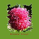 CUTE PINK DAHLIA FLOWER PETALS FUNNY QUOTE by Nicola Furlong