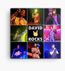 David Duchovny Rocks Metal Print
