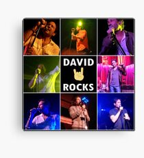 David Duchovny Rocks Canvas Print