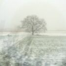 Solitary Tree #2 by Benedikt Amrhein