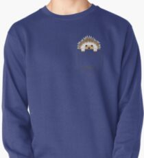 Hedgehog in your pocket! Pullover