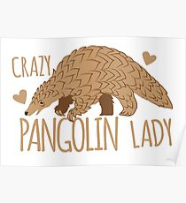 Crazy Pangolin Lady Poster