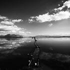 Dream landscape 1 by Panayotis