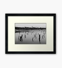 AS I WALK THROUGH THE VALLEY OF THE SHADOW OF DEATH Framed Print