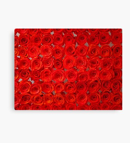 Infinity Roses Canvas Print