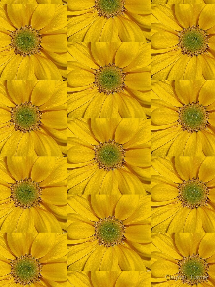 Flower Power by claytonT