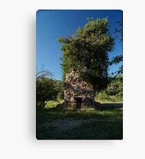 08 Carr House Ruins Tree Fireplace Canvas Print