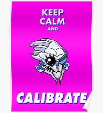 Keep Calm And Calibrate Poster