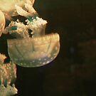 Taking on the Jellies by artbyeri
