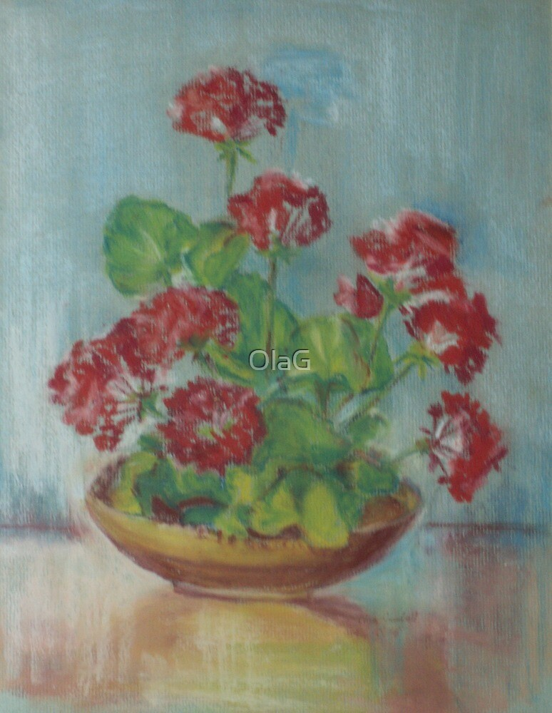 GERANIUMS  by OlaG