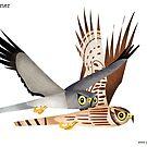 Hen Harrier caricature by rohanchak