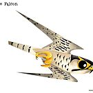 Peregrine Falcon diving caricature by rohanchak
