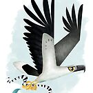 White-bellied Sea Eagle caricature by rohanchak