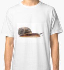 A close up of a Garden Snail. Classic T-Shirt