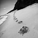 Small Steps Come First by Tracii C Photography