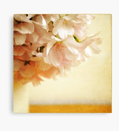 Be My Cherry Blossom Canvas Print