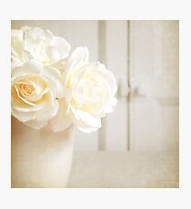 Scent of a wild rose Photographic Print