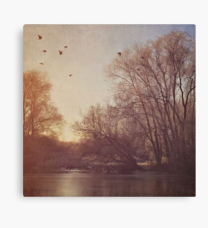 Birds take flight over lake on an early winters morning Canvas Print