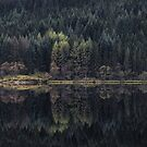 Loch Chon Reflections by Tim Haynes