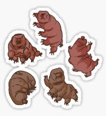 Wonderful Water-Bears Sticker