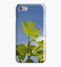 Fig Leaves iPhone Case/Skin